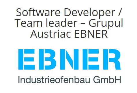 Software Developer / Team leader – Grupul Austriac EBNER